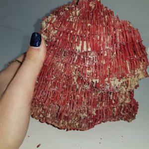 """קורל טבעי איכותי (לא צבוע) גוון אדום משקל: 425 גרם מידה: 16*14*10 ס""""מ"""